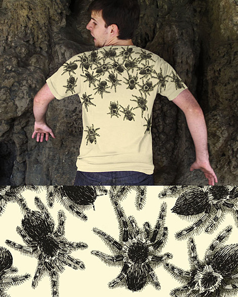 Herausforderung f�r Spinnenphobiker